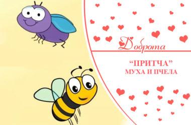 О дружбе: Муха и пчела