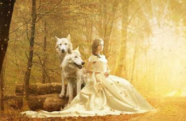 Мудра притча про двох вовків. Ви запам'ятаєте її на все життя