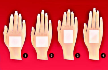 Тест. Форма рук и характер