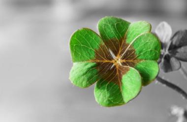 Прикмети щастя: як зрозуміти, що ваше життя зміниться на краще
