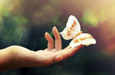 Хочеш змін: перестань мріяти і почни жити!