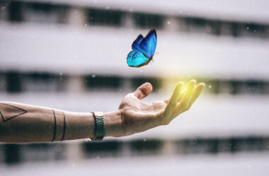 Притча яка розкаже як найти своє Щастя. Яке не покине вас ніколи.