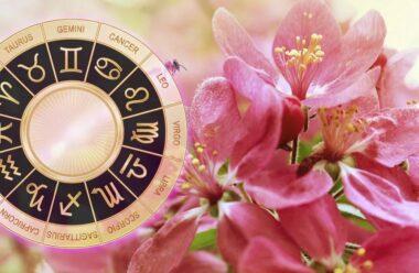 Гороскоп на квітень 2019: прогноз на місяць для всіх знаків Зодіаку