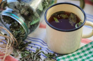 Цілюща м'ята! Чай який сприяє поліпшенню сну, знімає стрес і зміцнює імунну систему.