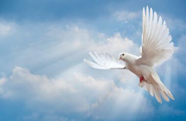 «Допомога неба» — Вірш, який допоможе вам ніколи не здаватися у скрутні хвилини життя.