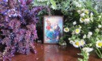 Чарівна рослина-оберіг, яка має буди у кожного в хаті на Святу Трійцю.
