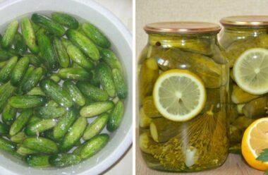 Мариновані огірки на зиму з лимоном, без додавання оцту. Обов'язково спробуйте такий спосіб консервування.