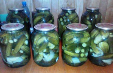 Особливий рецепт — огірки «Насолода». Які ж вони смачні взимку!