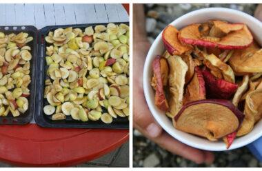 Як правельно сушити яблука, та умови їх зберігання.