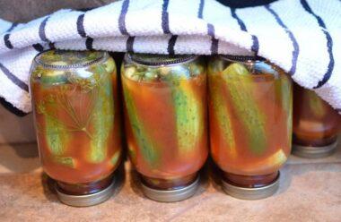 Смачнющі «Мамині» огірочки у томатном соусі. Смак дитинства!