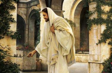 Дуже красива притча про те, що завжди треба покладатися на Бога і довіряти Йому.