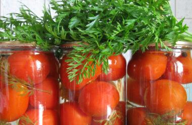 Консервовані помідори з морквяним бадиллям. Один з кращих рецептів на зиму.