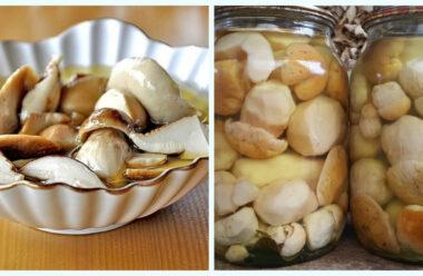 Мариновані білі гриби на зиму. Один з кращих рецептів.