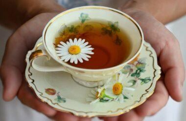 Потурбуйтесь про свої нирки, серце, судини та підшлункову залозу. В цьому вам допоможе цей чай