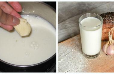 Корисний напій «Часникове молоко»: сприяє очищенню печінки, позбавляє болю у суглобах.