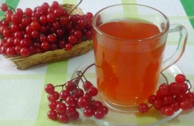 Калина з медом — найкращі ліки зимою. Встигніть запастись цим подарунком природи.