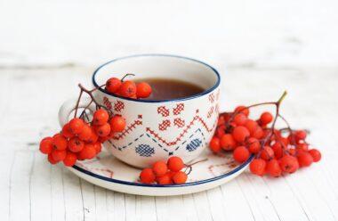 Вітамінним, тонізуючим чай з горобиною: для нормальної роботи кишечника, нирок і від грипу.