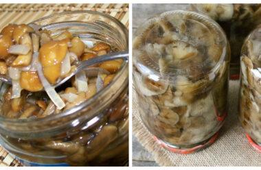 Мариновані опеньки на зиму. Неймовірно смачна закуска за простим рецептом