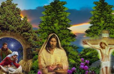 Різдвяна притча про три Кедри, і мрії, які обов'язково здійснюються.