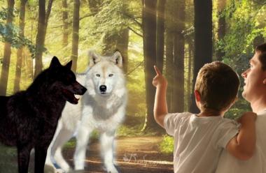 Повчальна притча про доброго та злого вовка. Який з них переможе, вирішувати нам самим.