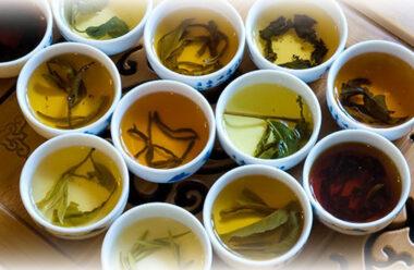 Рецепти чаїв від температури та хронічних захворювань, які можна приготувати вдома
