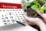 Посівний календар на березень та квітень 2020 року. Щоб мати гарний врожай