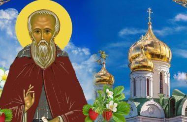 День святого Кирила — 22 червня. Що потрібно зробити, щоб захистити врожай