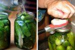 П'ять гарних рецептів для консервації огірків на зиму. Господині на замітку