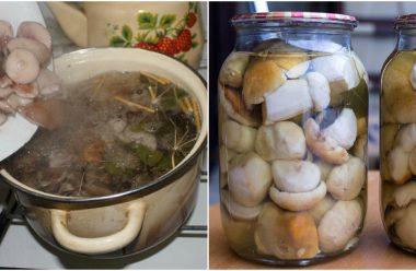 Рецепт маринаду для консервації будь-яких грибів. Виходять особливі та дуже смачні