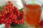 Вітамінним чай з горобиною, допомагає впоратися з багатьма захворюваннями