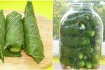 Огірки в листі хрону. Виходять дуже пікантними та хрусткими