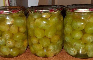 Маринований виноград, на смак як оливки. Встигніть запастися на зиму