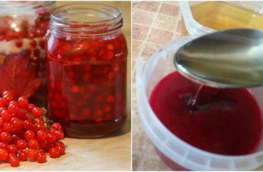 Калина з медом — допомагає при затяжному кашлі та сильній застуді. Встигніть запастися на зиму