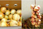 6 дієвих способів зберігання цибулі зимою. Так вона не проростає та не гниє