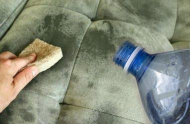 Простий та дієвий спосіб очистити диван від жирних та застарілих плям