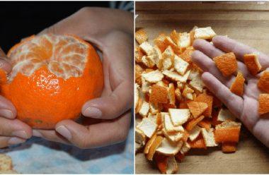 Корисні властивості мандаринової шкірки, про які мало хто знає. Не поспішайте їх викидувати