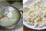 Кисломолочний сир — корисні властивості про які мало хто знає, та чому слід їсти його кожного дня