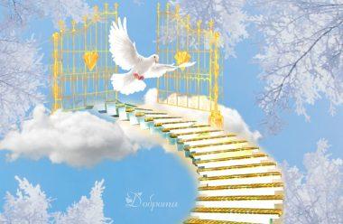 Сильні години у лютому, коли потрібно звертатися до свого Ангела і просити допомоги