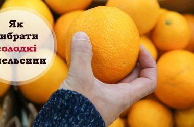Головні поради при виборі апельсинів. Щоб були солодкі, стиглі та смачні