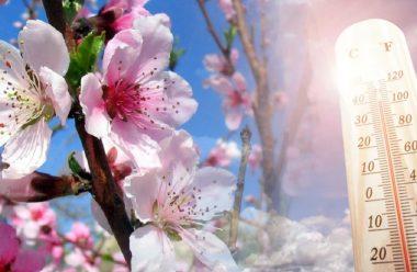 Якої погоди чекати у квітні? Синоптики дали прогноз на другий місяць весни