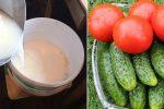 Молочна сироватка для томатів і огірків. Натуральний засіб який збільшить врожай в рази