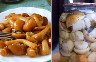 Дуже смачні гриби на зиму. Рецепт, який уже підкорив багатьох господинь